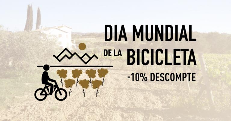 Día Mundial de la Bicicleta – 10% de desuento